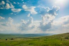 绿色山谷在蓝天下 免版税库存图片