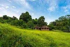 绿色山谷的两个老房子 免版税库存图片