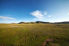 绿色山风景 免版税库存图片