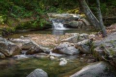 绿色山水小河 免版税库存图片