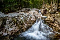 绿色山水小河 库存图片
