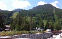 绿色山 库存图片