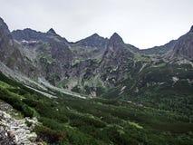 绿色山 图库摄影