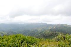 绿色山 库存照片