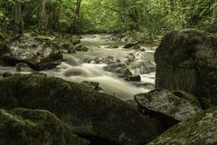 绿色岩石,河Pakra,克罗地亚 图库摄影