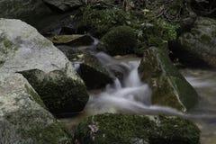 绿色岩石,河Pakra,克罗地亚 库存照片