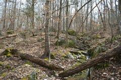 绿色岩石 库存图片