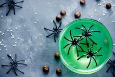绿色巫婆饮料或果冻在玻璃与蜘蛛,万圣夜食物 免版税库存图片