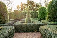 绿色庭院后院装饰 免版税库存照片