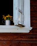 黄色庭院在白色木窗口里开花 库存照片