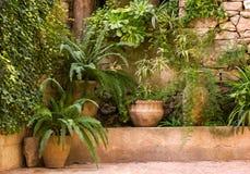 绿色庭院alonge石墙 库存图片