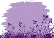紫色开花背景 免版税库存照片