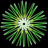 绿色形式和黑背景 免版税库存照片