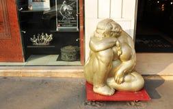 色情博物馆 库存照片
