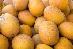 黄色成熟瓜堆在市场柜台的 库存图片