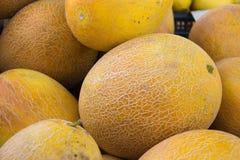 黄色成熟瓜堆在市场柜台的 库存照片