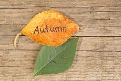 黄色或橙色叶子与题字再见夏天在女性` s手上在木背景 库存图片