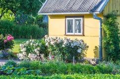 黄色房子 免版税库存照片
