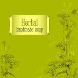 绿色手拉的草本和植物剪影 手工制造肥皂设计 库存照片