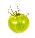 绿色斑马蕃茄 免版税库存图片