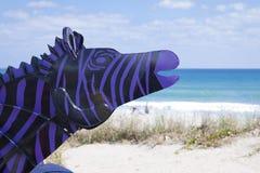 紫色斑马 库存照片