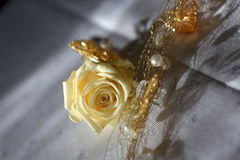 黄色新郎的玫瑰钮扣眼上插的花 库存照片