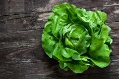 绿色新鲜的有机沙拉 免版税库存图片