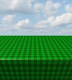 绿色方格的桌布 免版税库存照片