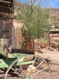 绿色无盖货车和树 免版税图库摄影