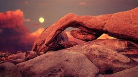 紫色日落和上升的月亮在约书亚树国家公园,美国 免版税库存图片