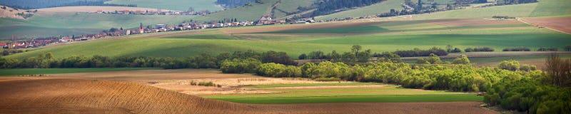 绿色春天小山在斯洛伐克 晴朗的4月在一个小镇 免版税图库摄影