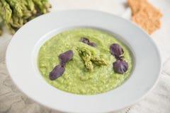 绿色春天被制成菜泥的芦笋汤 库存图片