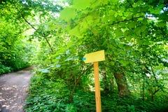 黄色显示到与路的左边的箭头木标志在森林 免版税库存图片
