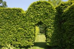 绿色曲拱在庭院里 免版税库存照片