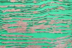绿色木被绘的纹理 免版税库存图片