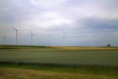 绿色未来我们的梦想  库存照片