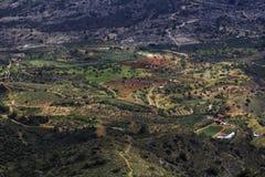 绿色村庄 库存图片