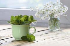 绿色杯子在一张木桌上的蜜蜂花officinalis 免版税库存照片