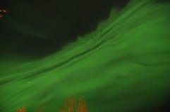 绿色极光 免版税库存图片