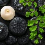 绿色枝杈蕨、冰和蜡烛美丽的温泉静物画  免版税库存照片