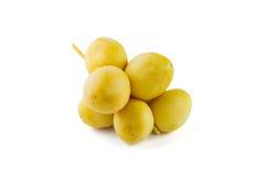黄色枣椰子 免版税库存图片