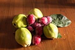 绿色柑橘,意大利, apulia 免版税库存照片