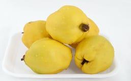 黄色柑橘 库存图片