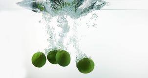 绿色柠檬, aurantifolia的柑橘,结果实落入水反对白色背景, 股票视频