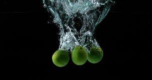 绿色柠檬, aurantifolia的柑橘,结果实落入水反对黑背景, 股票录像