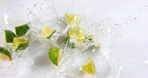 绿色柠檬, aurantifolia的柑橘,结果实落在水反对白色背景, 股票录像