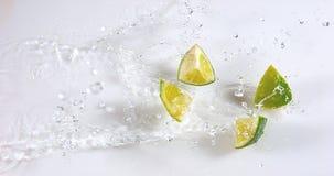 绿色柠檬, aurantifolia的柑橘,结果实落在水反对白色背景, 影视素材