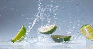 绿色柠檬, aurantifolia的柑橘,结果实落在水, 股票录像