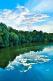 绿色树和天空在河的反射 免版税库存图片