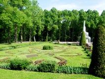绿色树和草坪在petergof公园  免版税库存图片